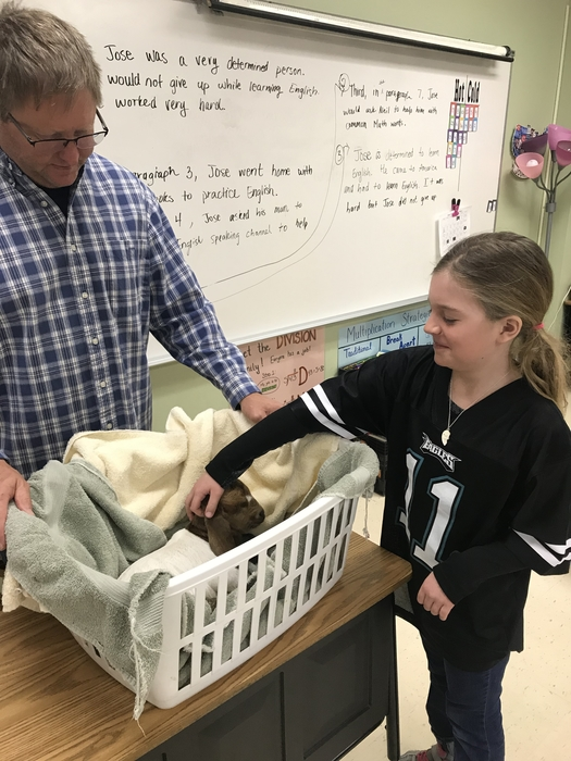 Matt Strand brought in a kid (baby goat) and allowed the 4th graders to ask questions and pet it.