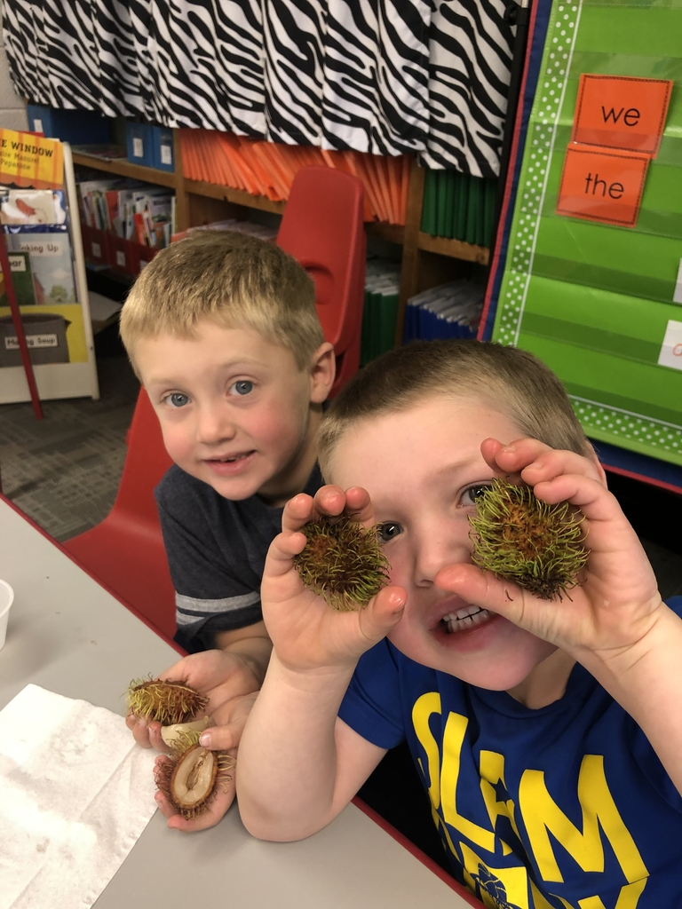 Trying Rambutan for the fresh fruit snack today!